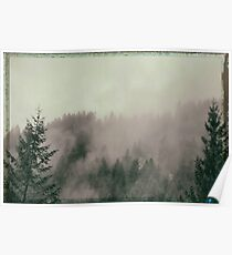 driving through the foggy Canyon of the Pacific NW Poster