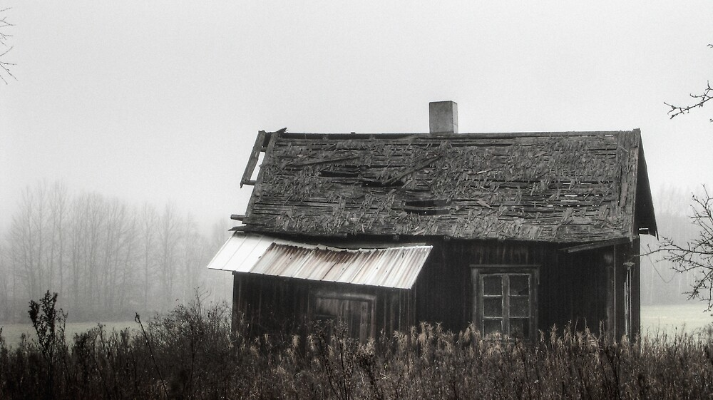 'Fading away autumn' (hdr) by Petri Volanen