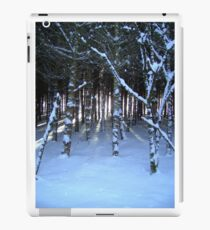"""Trees & Light featured in """"#1 Artists of RedBubble"""", """"Inspired Art"""", Live...Love...& Dream"""" & The Great Outdoors"""" iPad Case/Skin"""