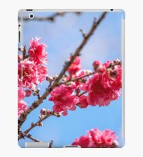 Pink Blossoms Against a Blue Sky iPad Case/Skin