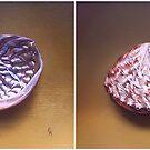 Abalone Shell by Elena Kolotusha