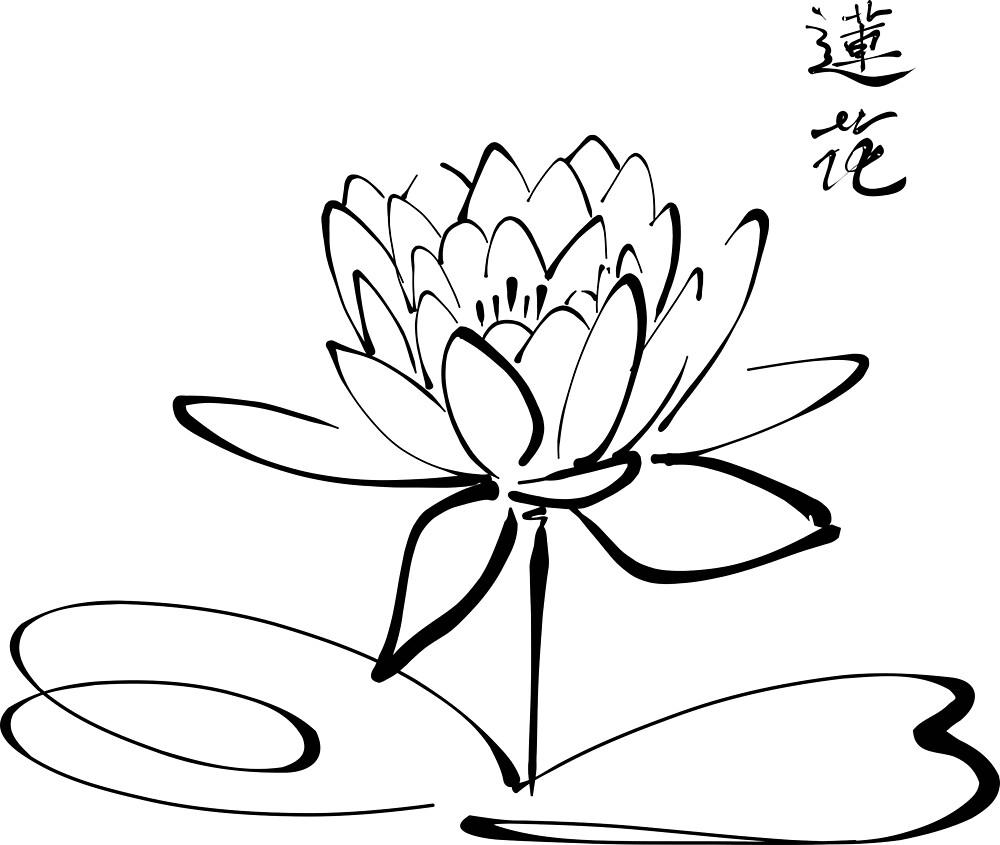 Calligraphy Lotus. by Claudiocmb