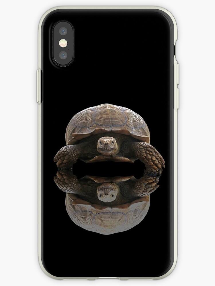 Sulcata Schildkröte mit Reflexion von misimichu
