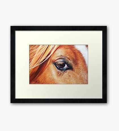 Summer chestnut Framed Print