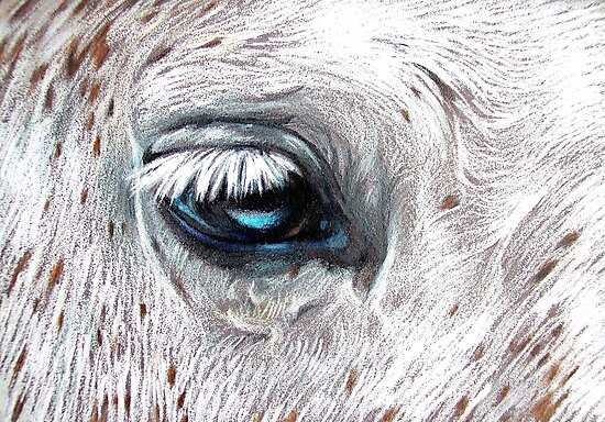 Blue-eyed by Elena Kolotusha