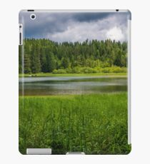 Alpine summer, Austria iPad Case/Skin