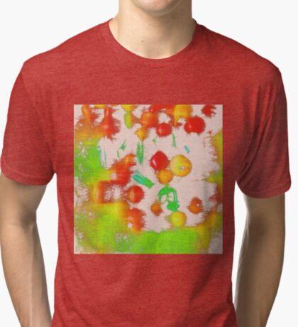 Fruit light mix Tri-blend T-Shirt