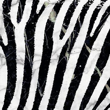 marble zebra by ghjura