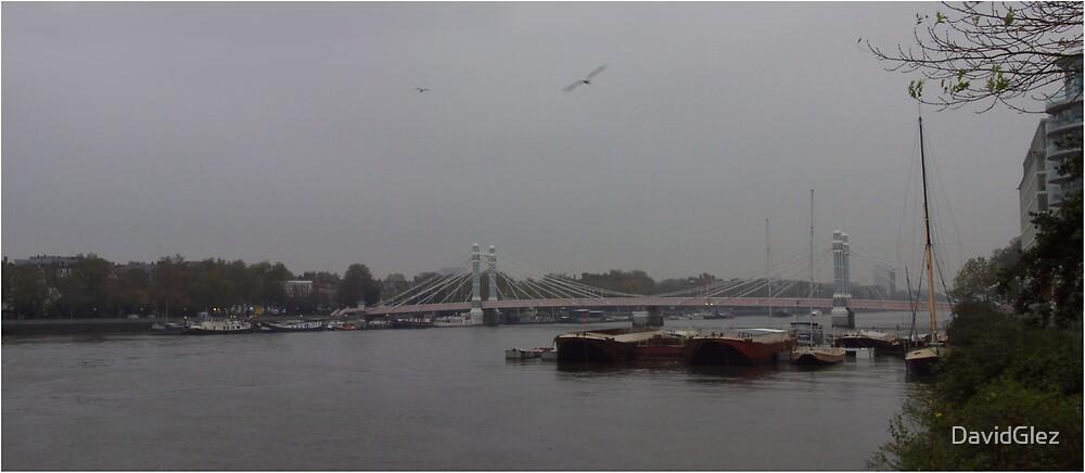 Albert Bridge, London by DavidGlez
