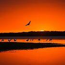 Sunset arrival by Joe Saladino
