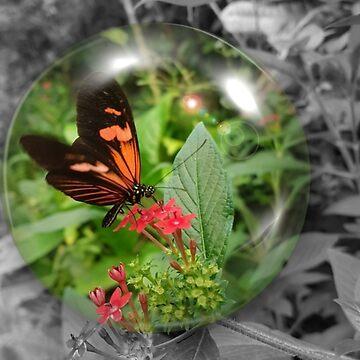 Butterfly Bubble  by Bluecloud184