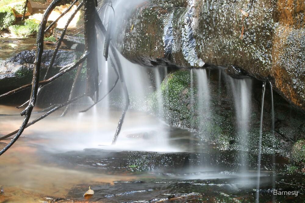 Somersby Falls 4 by Barnesy