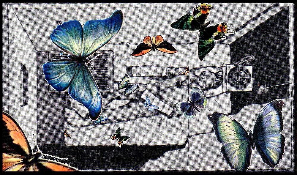 Man as Butterfly by John O'Dal