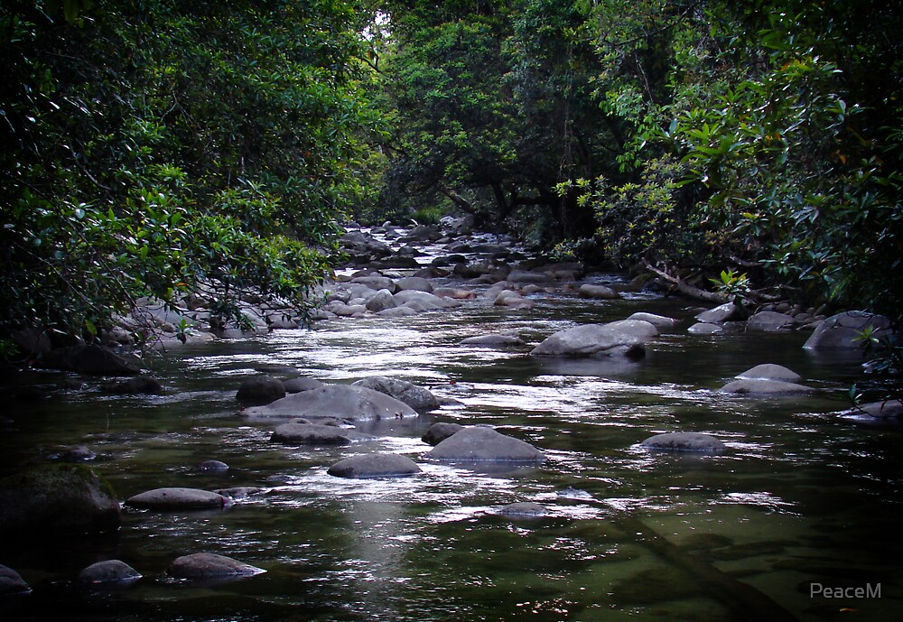 green stream by PeaceM