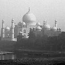 Taj Mahal in Mono by Bev Pascoe