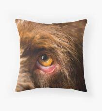 Brown Roan Italian Spinone Dog Nico Eye Detail Throw Pillow