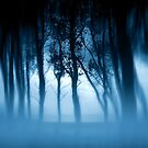 Blue Mist Story by Dave Harnetty