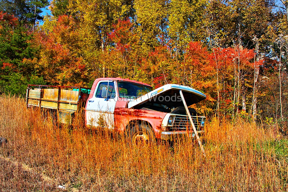 Rickys Truck by Robert Woods