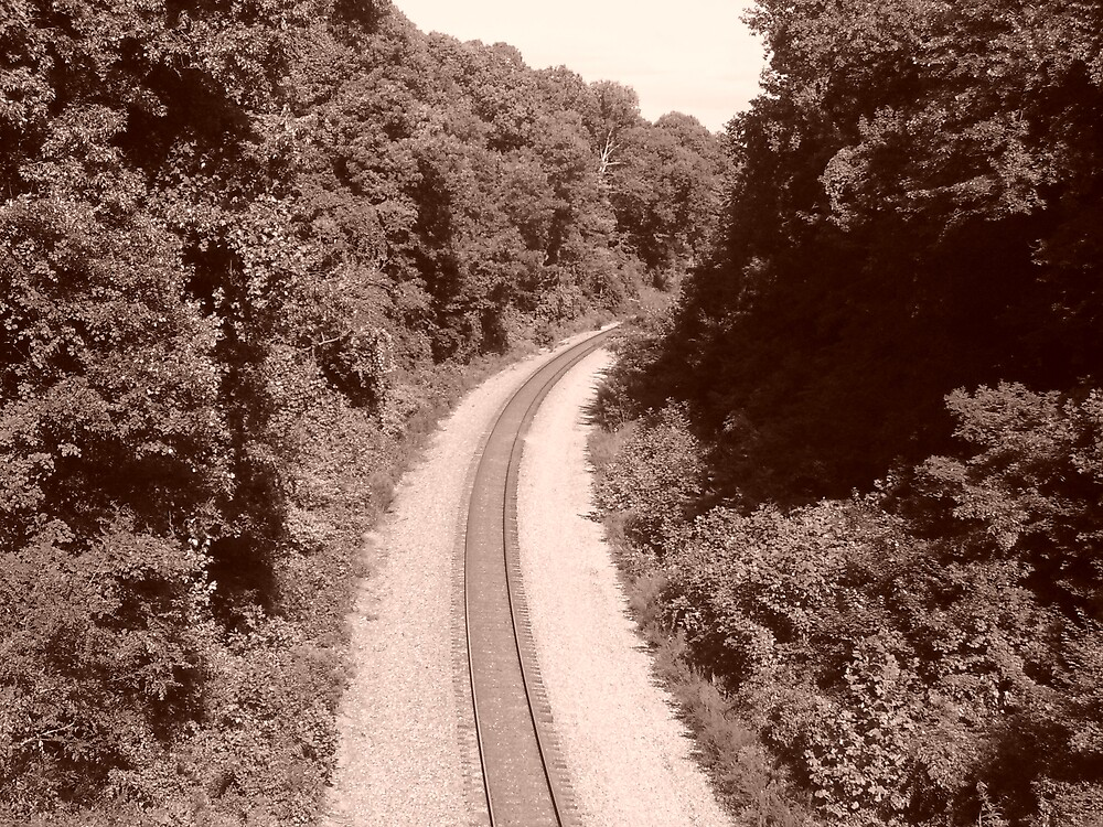Railroad tracks in sepia by joelz