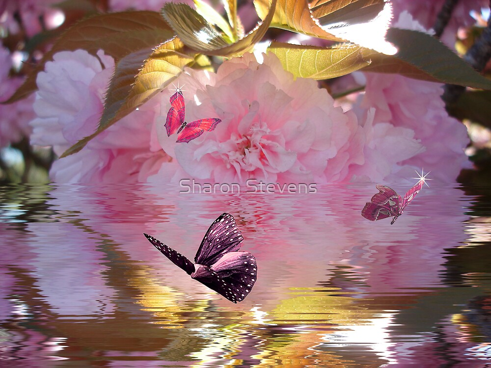 Peaceful Butterflies by Sharon Stevens