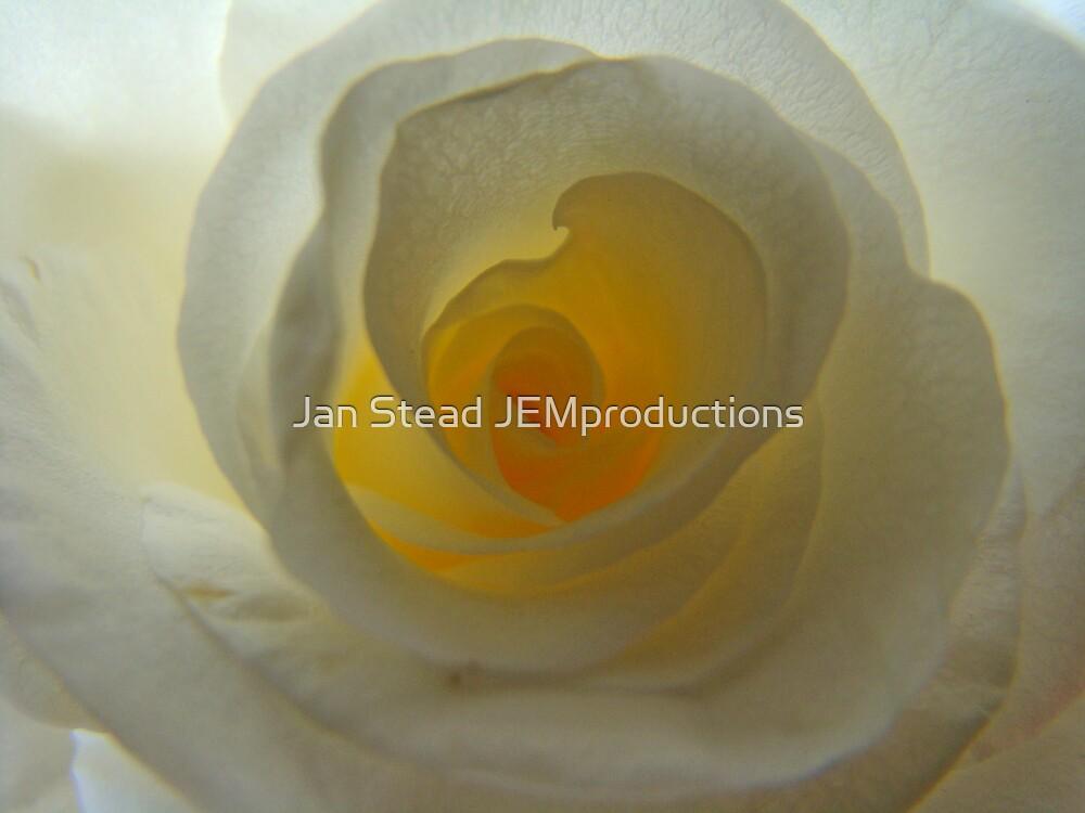 the secret heart by Jan Stead JEMproductions