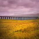 Ribblehead Viaduct by Dave Hare
