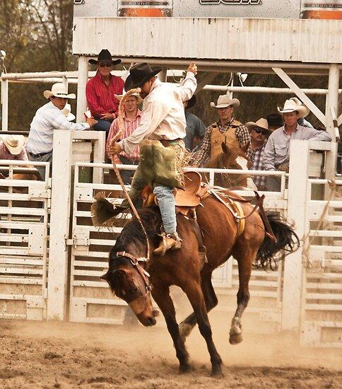 Rodeo Cowboy Riding a Wild Horse by Buckwhite