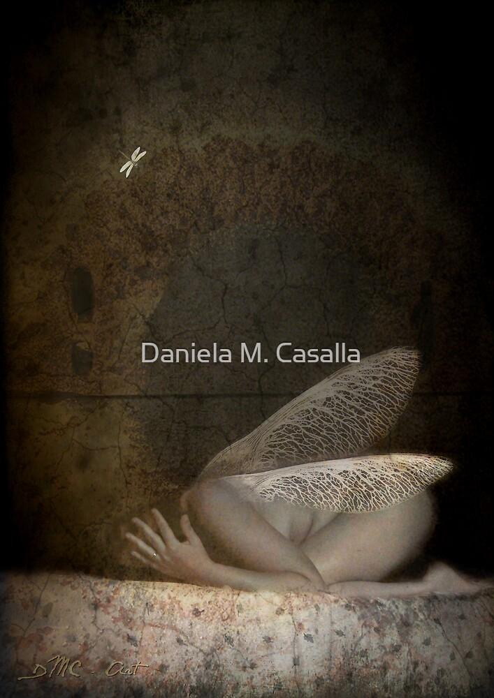 Transformaciones by Daniela M. Casalla