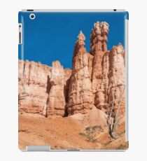A Gathering iPad Case/Skin