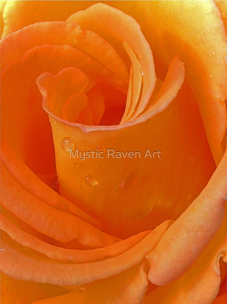 That Special Rose... by Mystic Raven Art