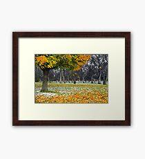 Autumn Dusting {5727} Framed Print
