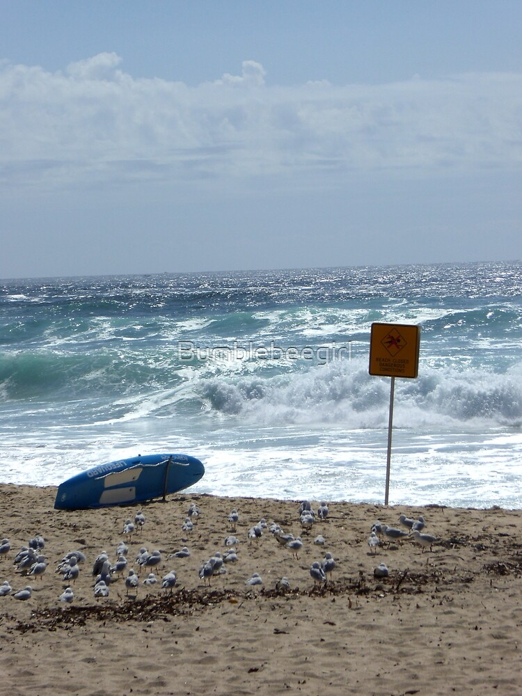 Bondi Beach life safety by Bumblebeegirl