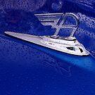 Austin A35 Hood by Mark Wilson