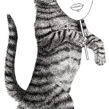 Cat walk by Simut-P