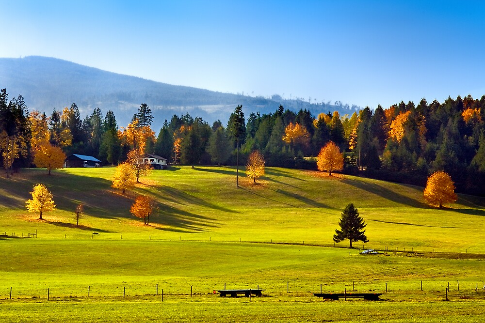 AUTUMN PASTURES by Sandy Hill