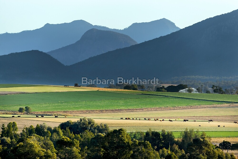 Farming Fields  by Barbara Burkhardt
