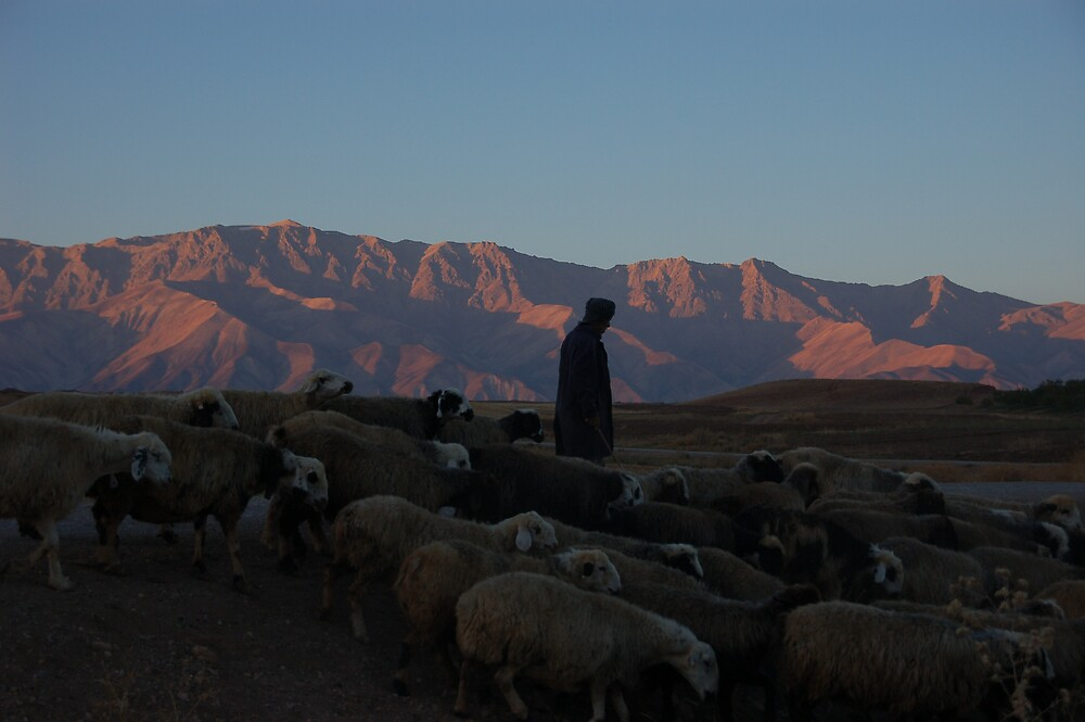 Shepherd at sunrise, Iran by Peter Gostelow