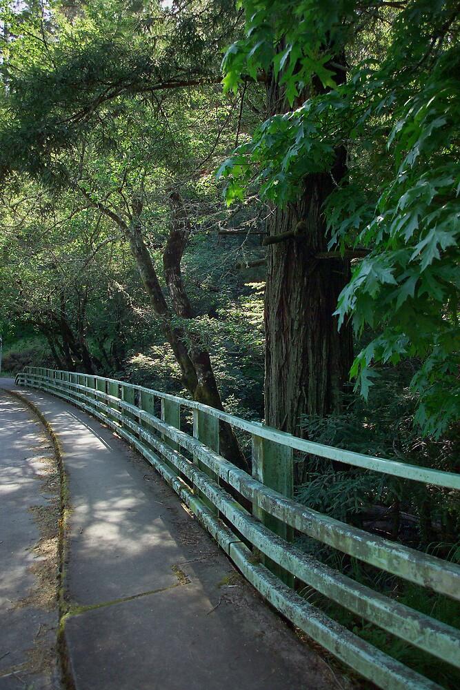 Lagunitas Bridge by Dennis Begnoche Jr.