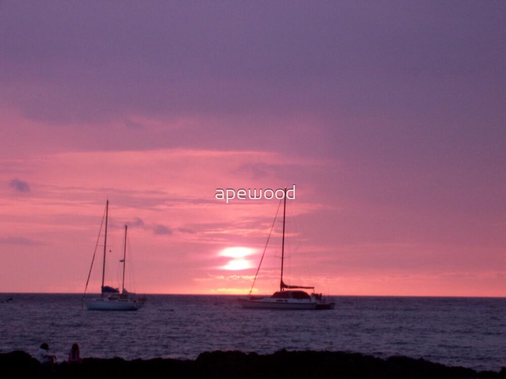 Hamakua Sunset by apewood