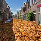Streets are NOT full of leaves by MooseMan