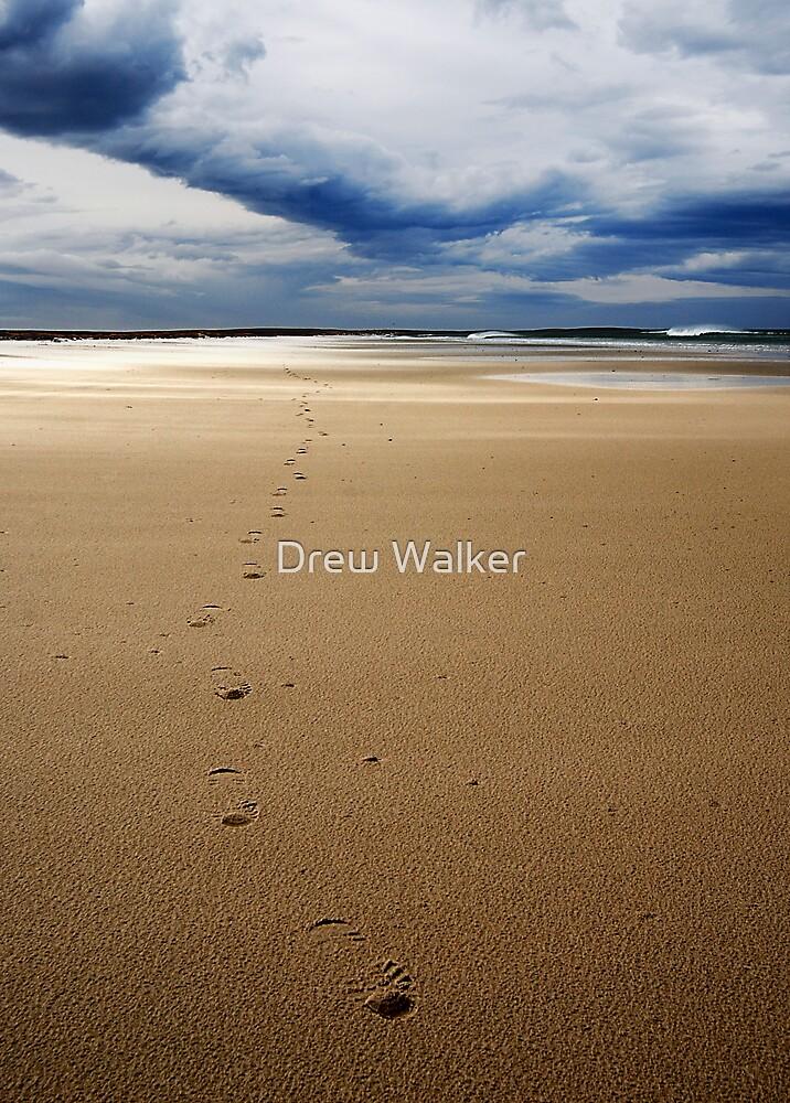 On Bertha's Beach by Drew Walker