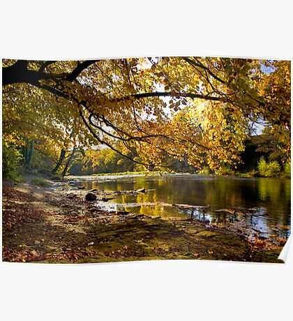 Autumn Along The Wear Poster