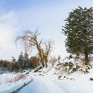 Winter at Edwards Gardens by baneling