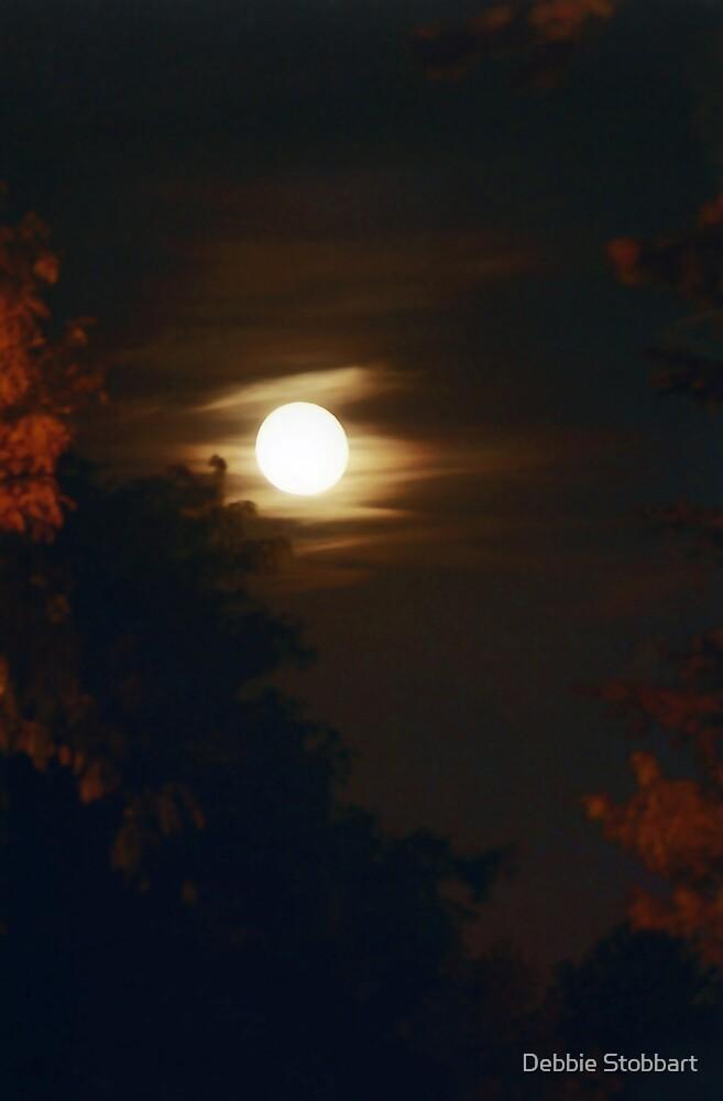 Autumn Moon by Debbie Stobbart
