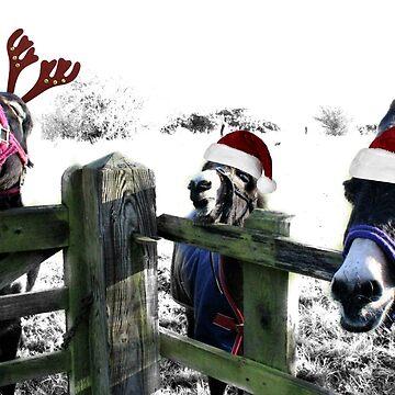 3 not so wise donkeys by Ladymoose