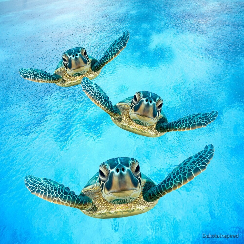 Sea Turtles Swimming by DakotaInspired
