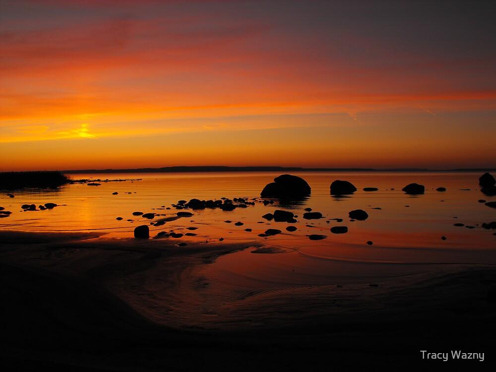 Sky Spilling Paint Onto The Beach by Tracy Wazny