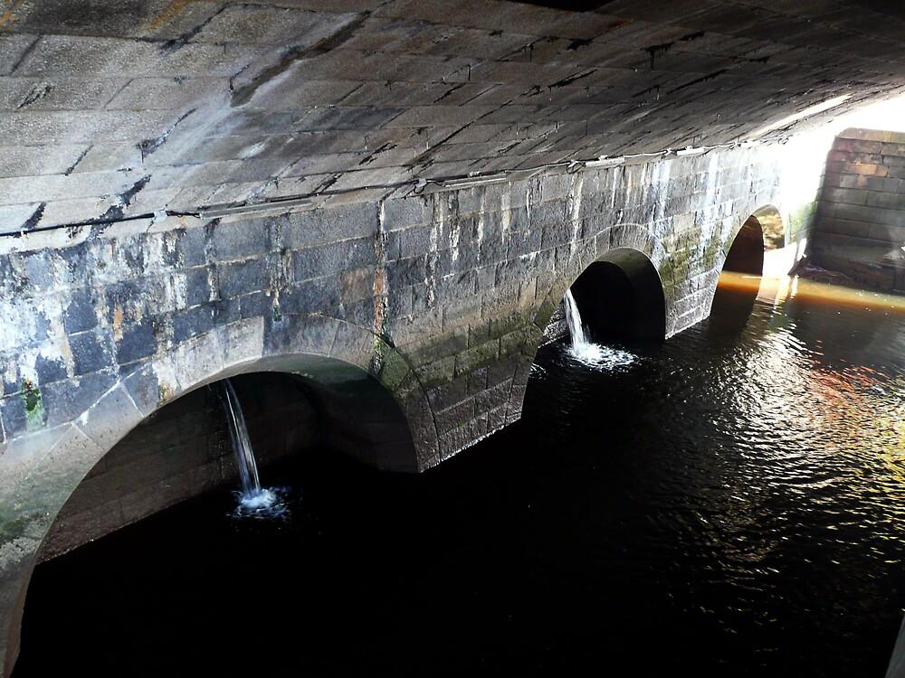 Hidden Under The Bridge by stevain