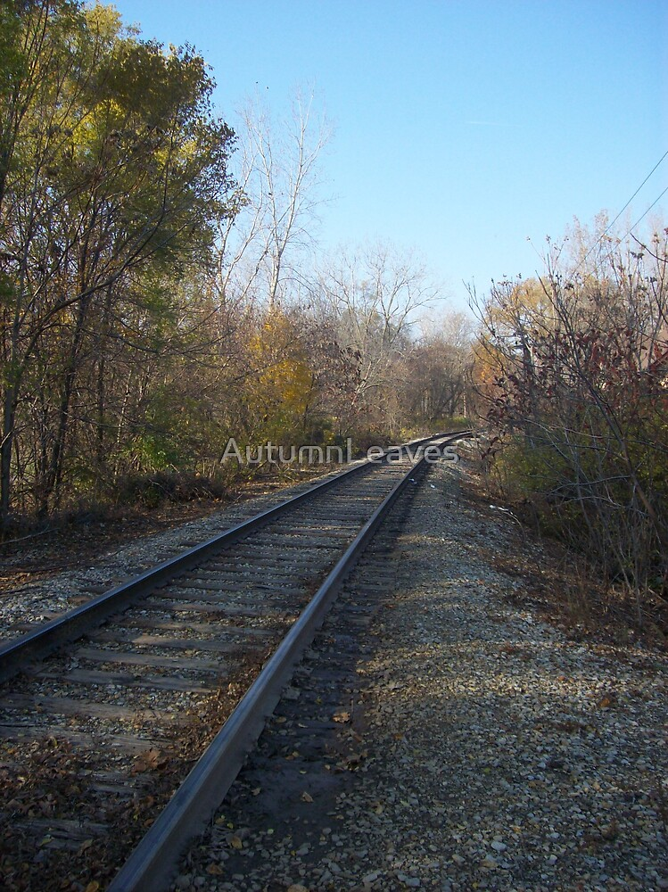 Curving Tracks by AutumnLeaves