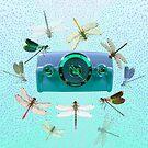 Radio Dragonfly by SmileDial